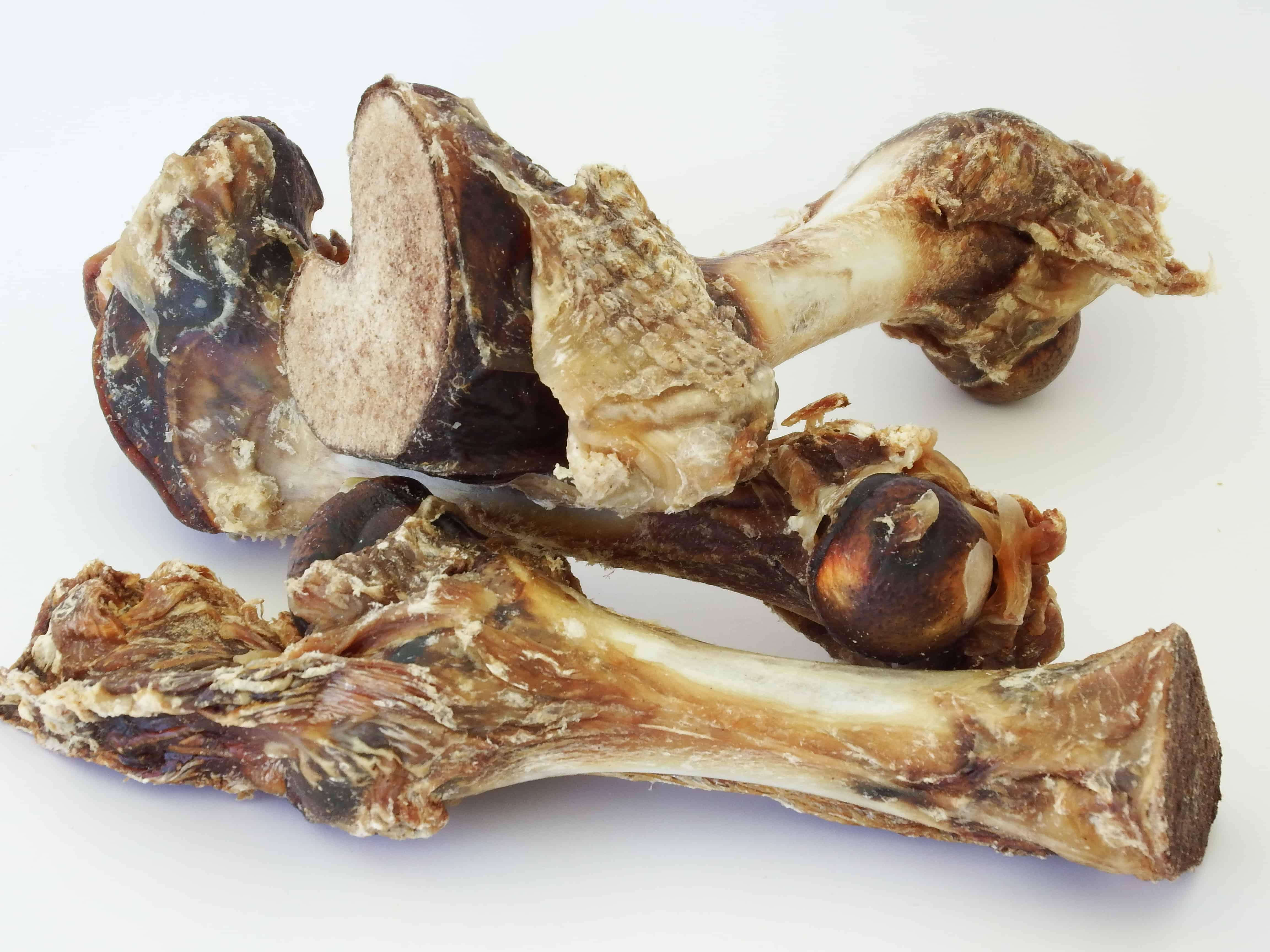 Veal Femur